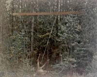 oil on canvas, 73 x 92 cm